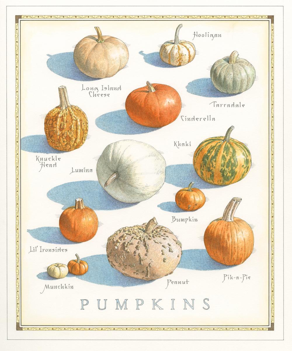 Pumpkins finish001.jpg