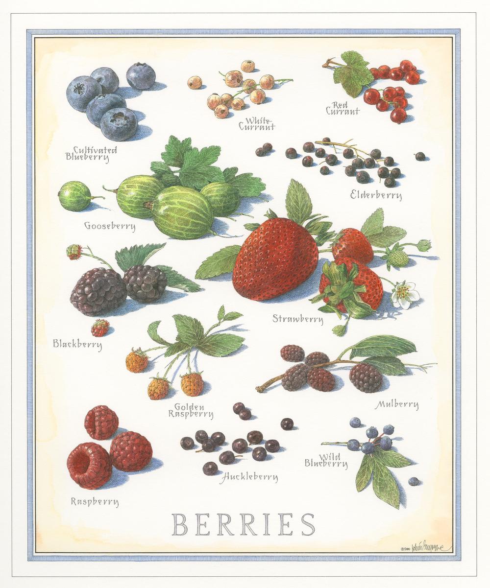 Berries finish001.jpg