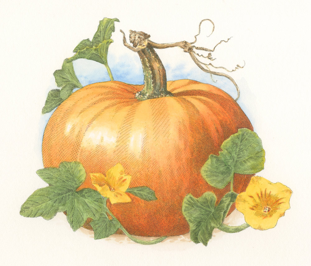 Pumpkin finish001.jpg
