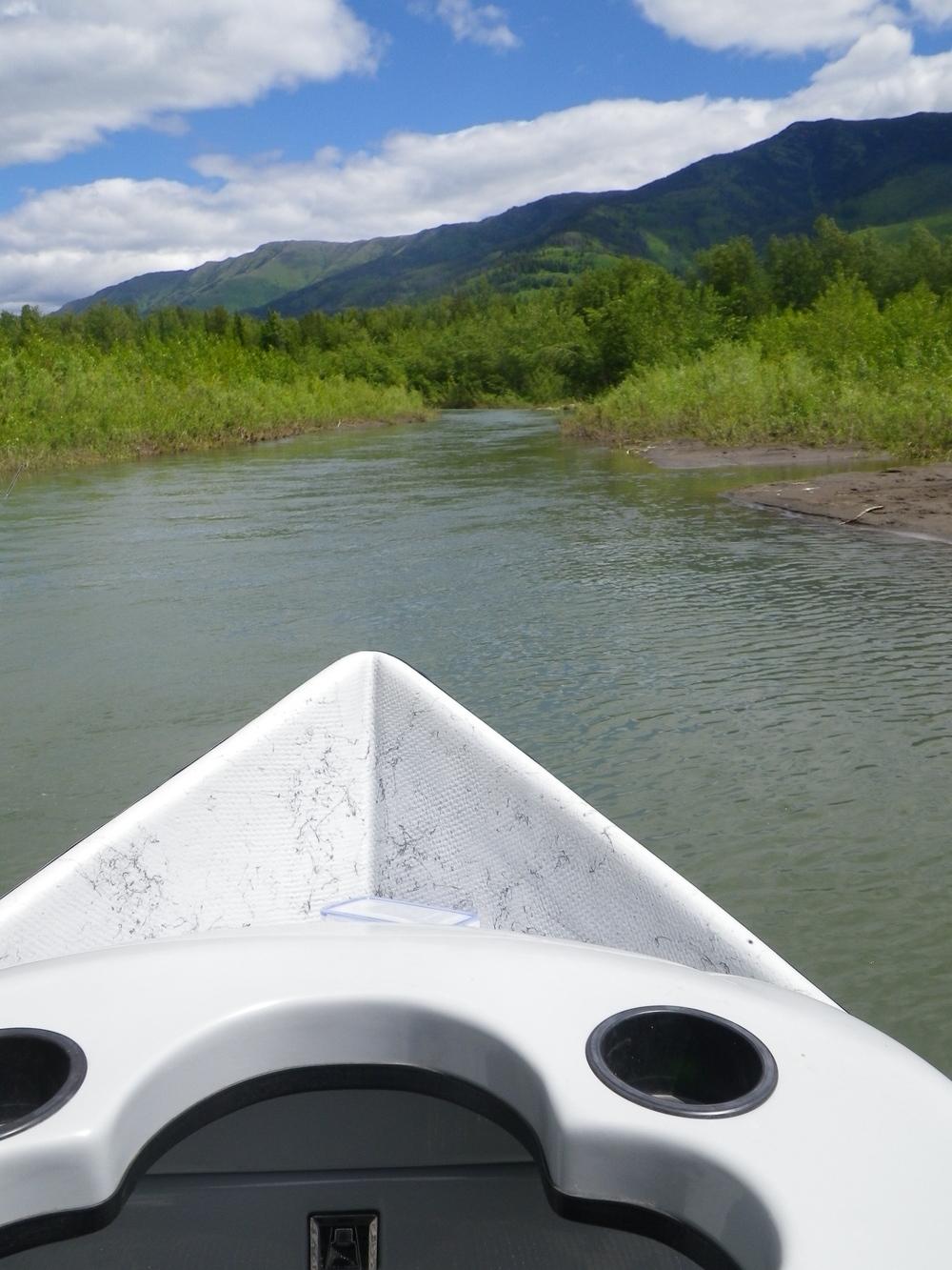 Elk River Fly Fishing Fernie