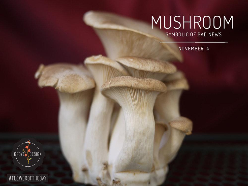 GroveDesign-FOTD-Mushroom.jpg