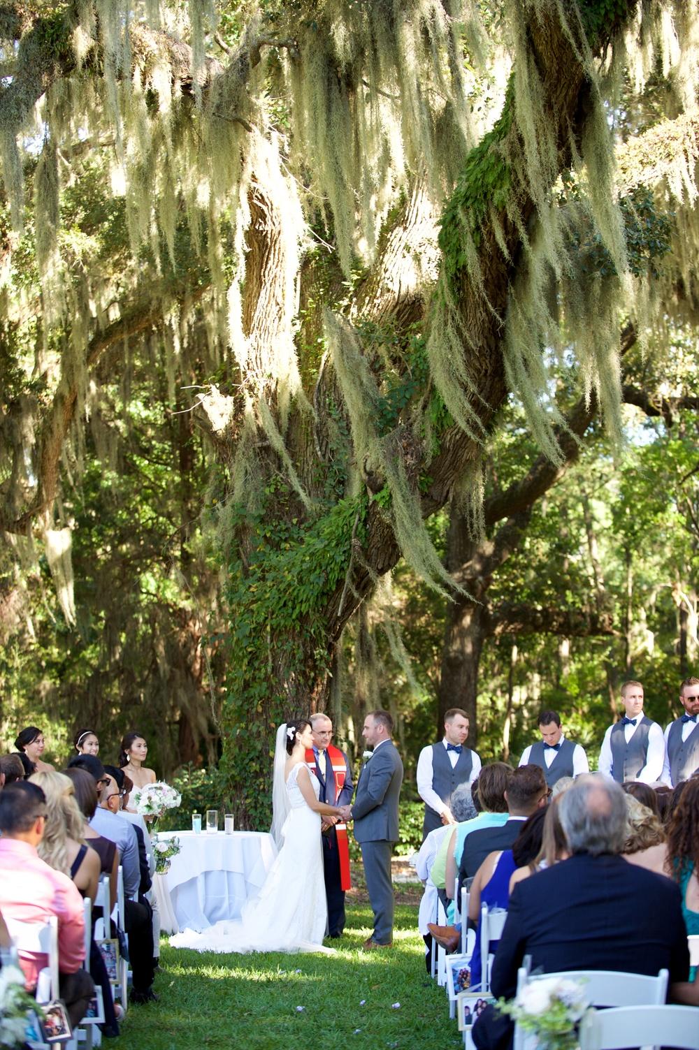 Wedding photography at honey horn plantation