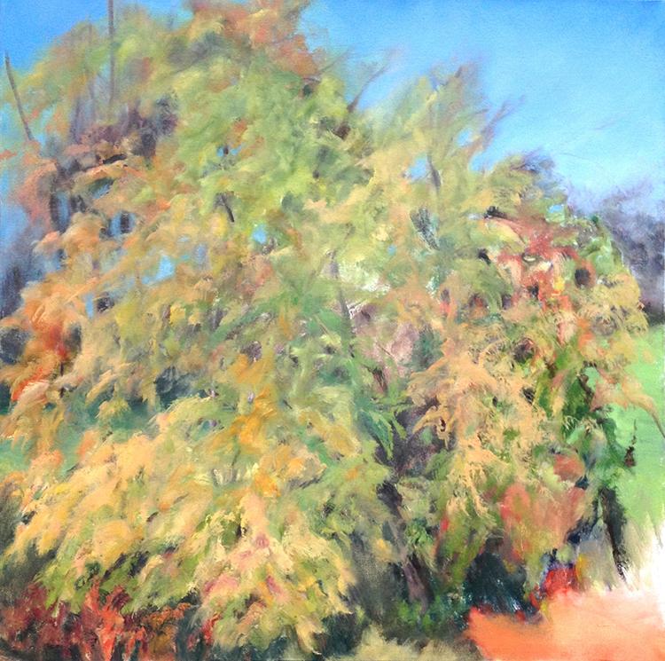 Dalla Mia Finestra, 2015, Oil on canvas, 36 x 36 inches