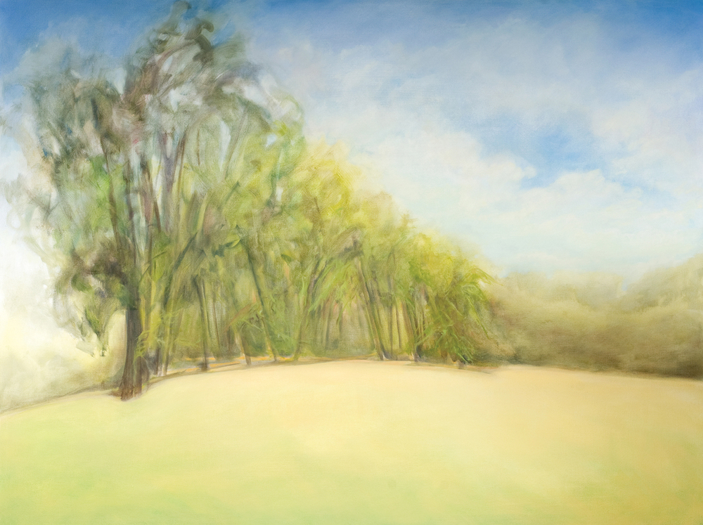 Coming on Summer II , 2009 Oil on Canvas, 54 x 72 inches