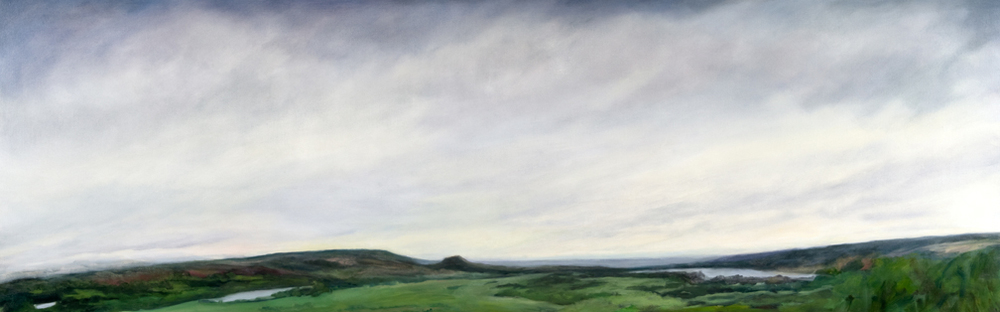 Summer , 2009, Oil on Canvas, 27 x 84 inches (Private Collection)
