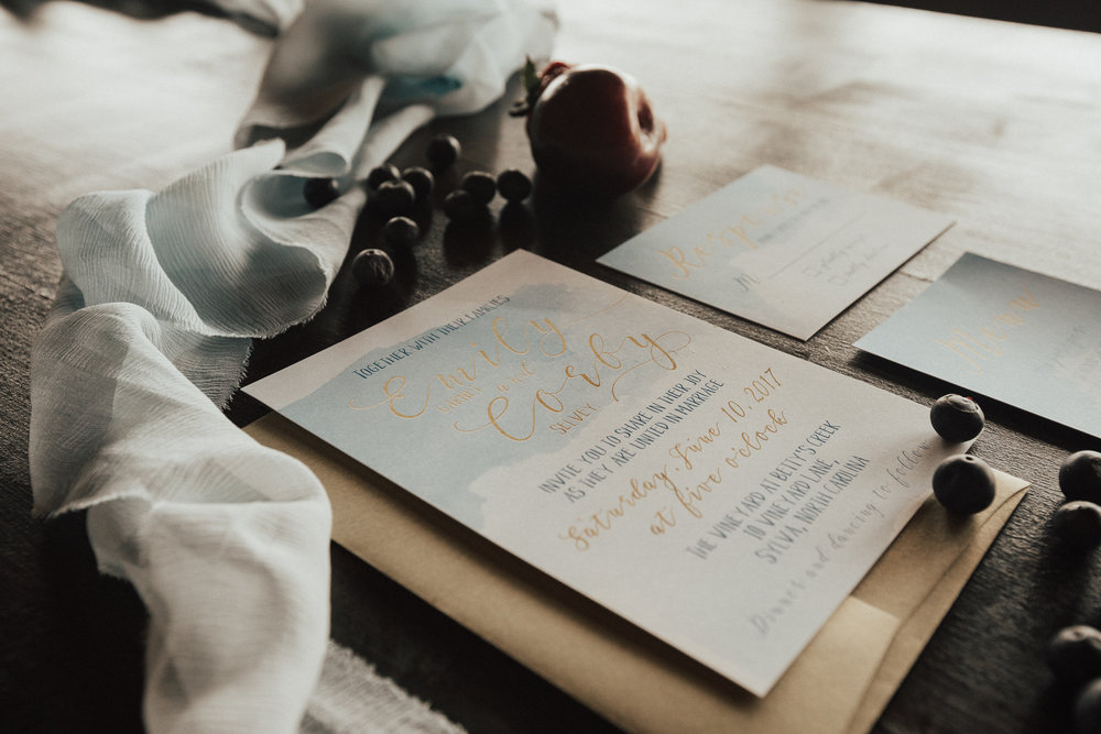 Ashley Steffens Photography Styled Shoot Invitations 03