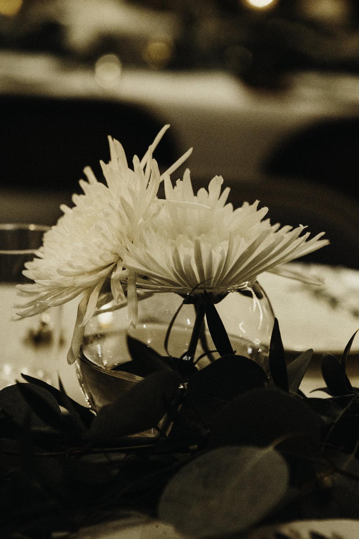 FacellaFamilyPhotos-3990.jpg