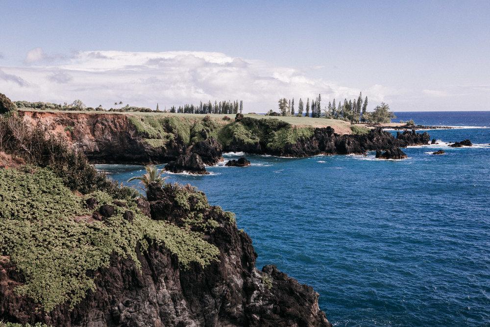 Maui \\ Travel Blog