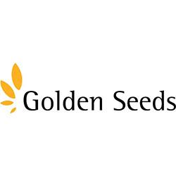 Golden Seeds.jpg