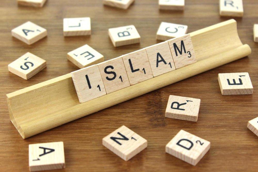 Issues - ZIAÏAN, Shodja Eddin (prof), L'État islamique continue à frapper, cr. opensource google .jpg