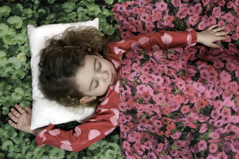 Flower Bed, 2012, archival pigment print on paper