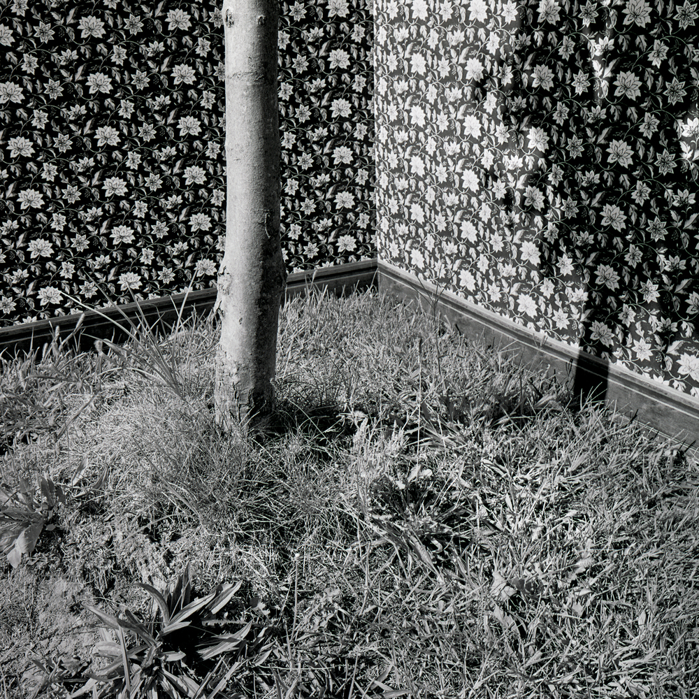 Cornered, 2005, archival pigment print on paper