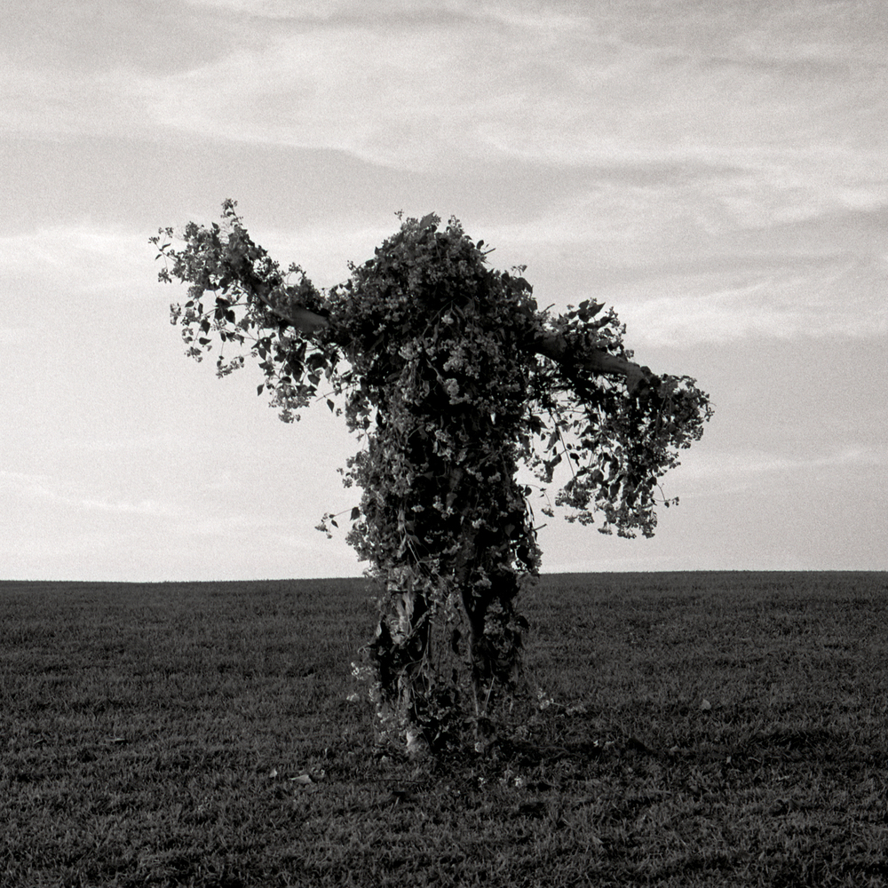 Tree Man, 2004, archival pigment print on paper