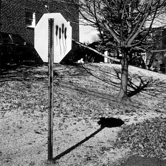 Marked from the Suburbia Series, 1993, archival pigment print on paper
