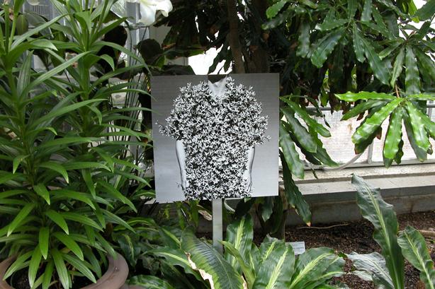 In the Garden 5.jpg