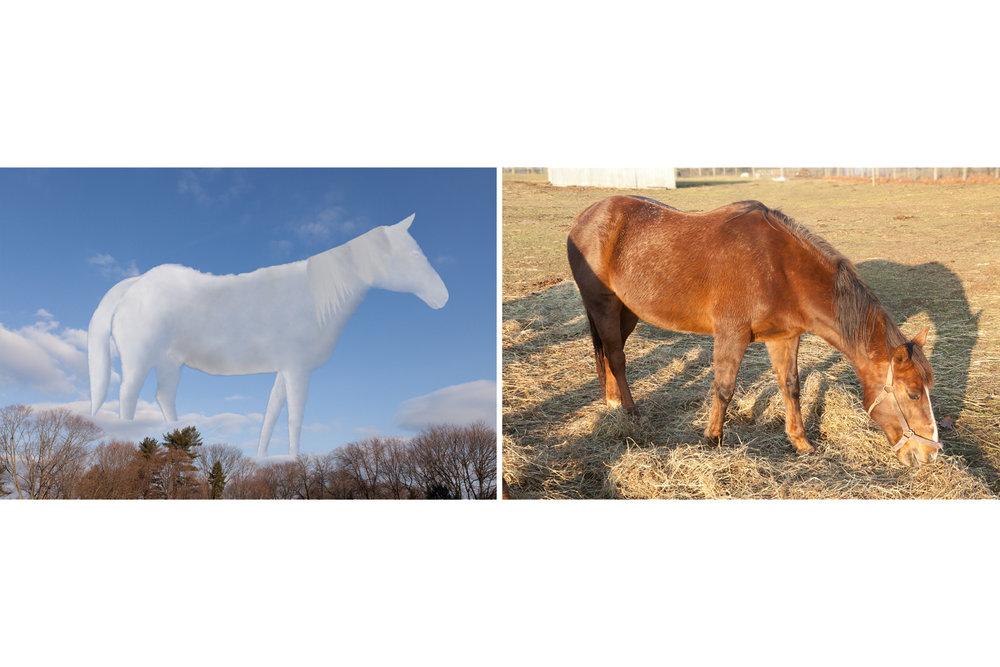 Horses, 2017, archival pigment print