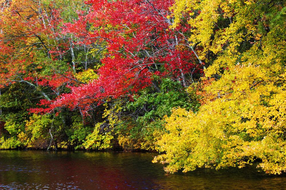 fall2014-23.jpg
