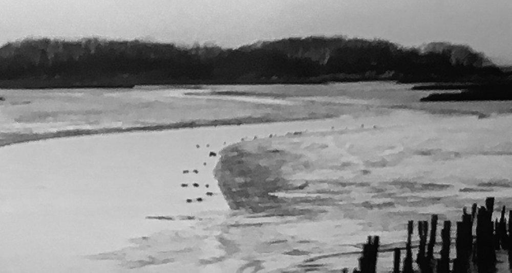 river bw.jpg