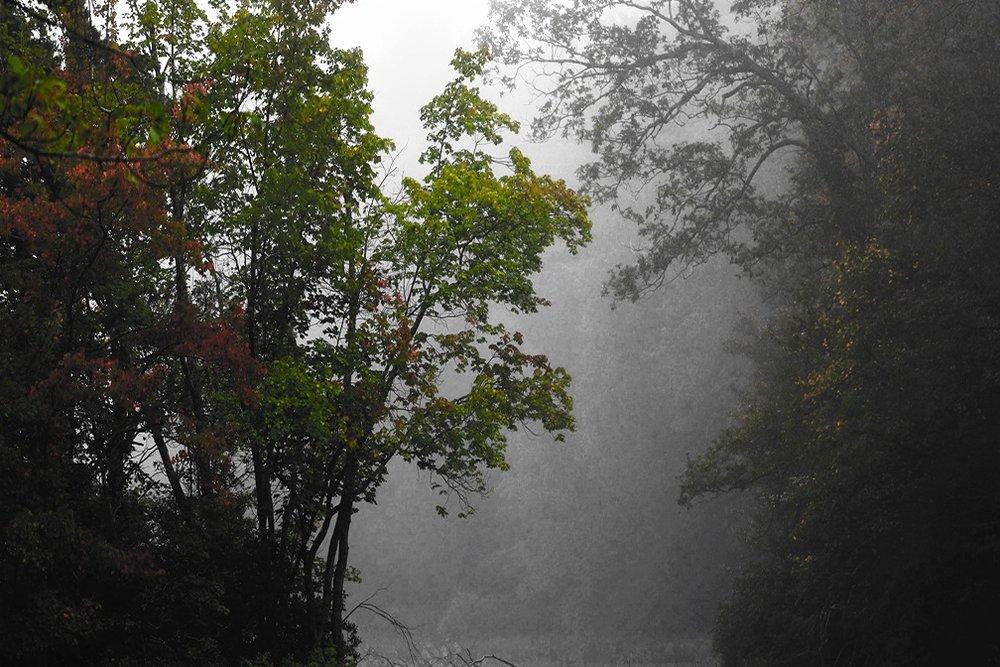 9-27-2017 fog.jpg