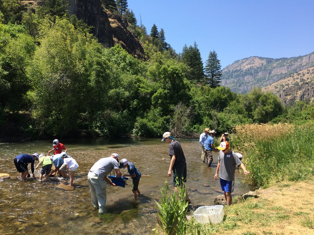 What makes Stokes a special place to work? We are striving to bring nature education to everyone in Cache Valley.