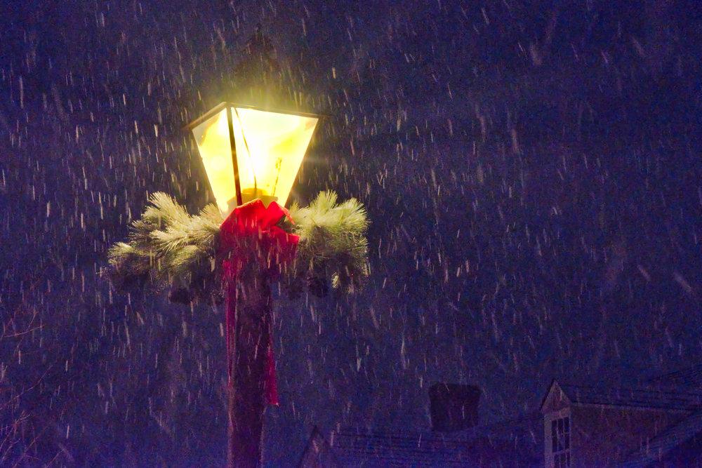 _DSF9812 Wmbg Christmas Light.jpeg