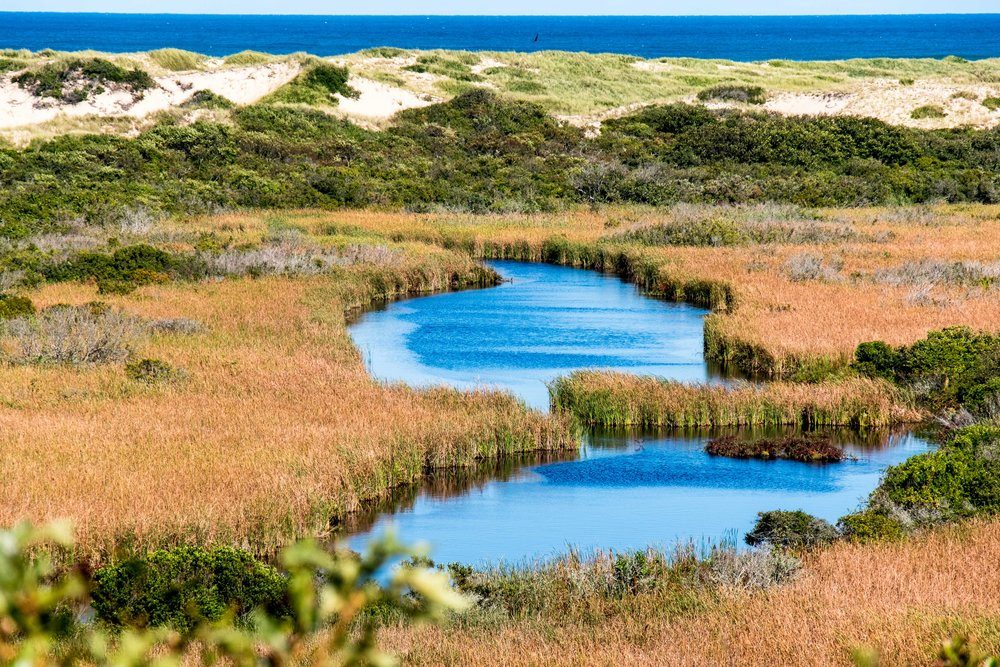 Marsh ponds, dunes and a bright blue ocean at Cape Code National Seashore