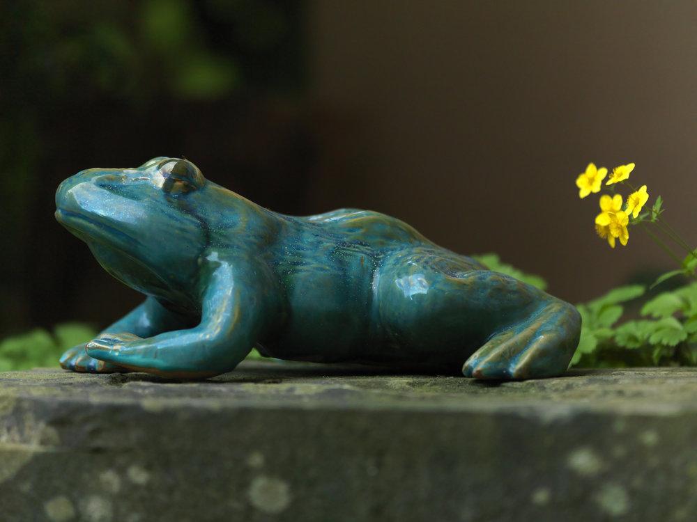 GardenFrog