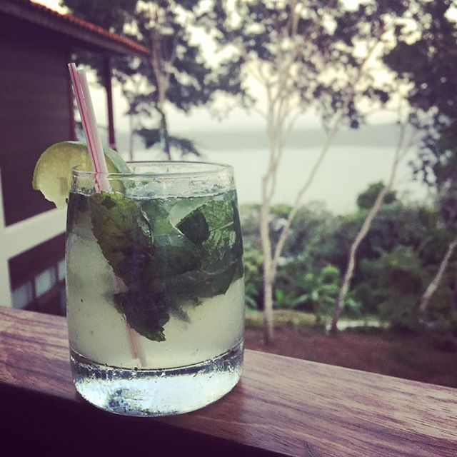 When the digital world signifies that it's #nationalrumday we can only pay tribute to this magnificent spirit with the classic and always delicious #mojito  Even better when the view overlooks a natural lagoon in #nicaragua made with their national spirit, @flordecanarum  #cocktails #mixology #bartender #nomad #cocktailroadshow