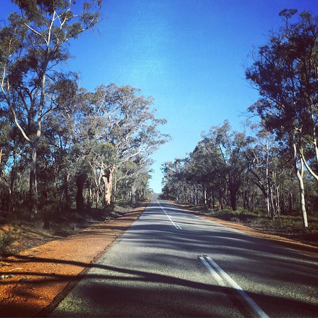 There is something beautiful and unique about the #australia #outback but this #photo captures some of it  We never know where the #roadshow will go next, but it's nice to stop and enjoy the #view along the way  Missing my #roaddog @solichs