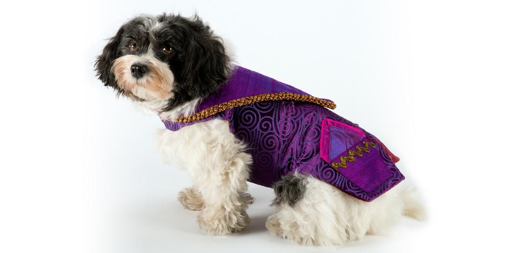TravellingJacket-PurplePockets-2_rococo_dog_clothing.jpg