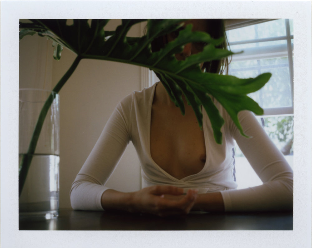 Folie-A-Plusieurs-Parfums_Rita_Lino_Contribution_daisies_perfume_5.jpg