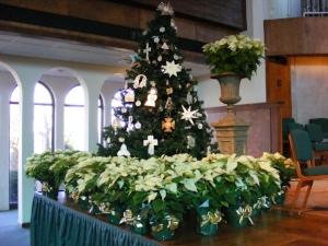 VHBC Dec 2010 024.JPG