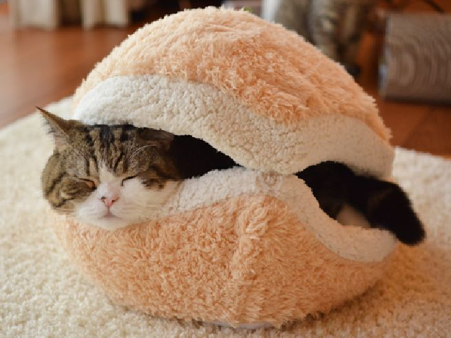 Cat-Burger-Pillow_3.jpg