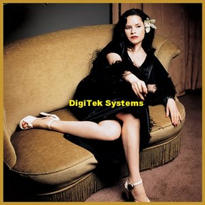 DigiTek Systems