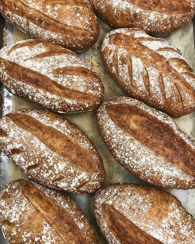 Roasted Garlic Sourdough 🤤 . . . . #patisseriemargo #patisserie #french #bakery #edinamn #excelsiormn #shopsmall #shoplocal #minnesota #mn #localbakery #yum #baking #sourdough #bread #flour #garlic #sourdoughbread