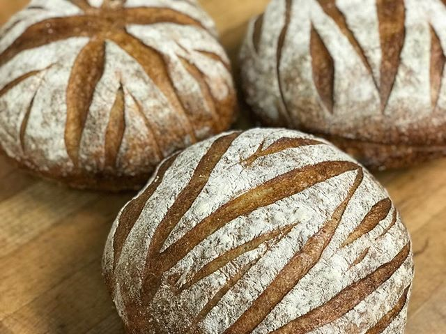French boule! Come get 'em before they're gone! 🤗 . . . . . . . . . . #frenchboule #bread #frenchbread #sourdough #patisseriemargo #patisserie #french #bakery #edinamn #excelsiormn #shopsmall #shoplocal #minnesota #mn #localbakery #yum #baking #baked #freshbaked #flour #flourpower