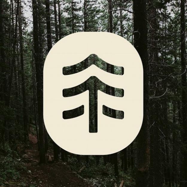 tree era (ii).