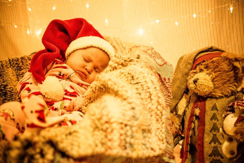 Little Bear Photo Nanaimo Holiday Quicky-10.jpg