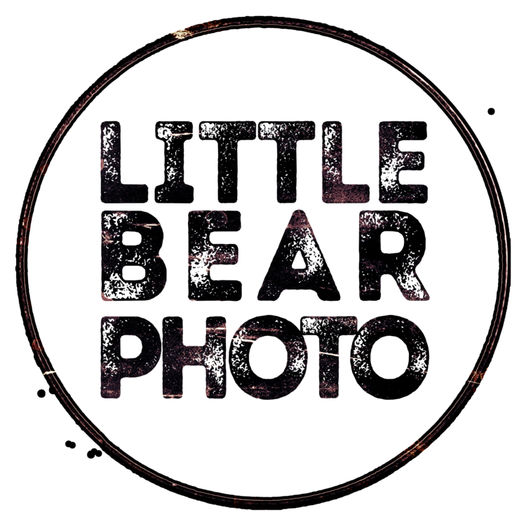 Little Bear Photo