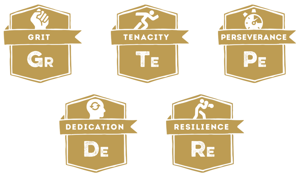 Grit - Tenacity - Perseverance - Dedication - Resillience