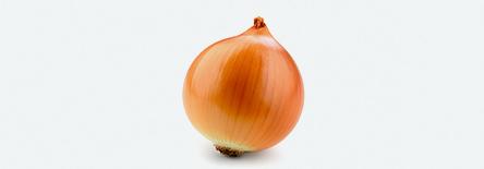 Onions3.jpg