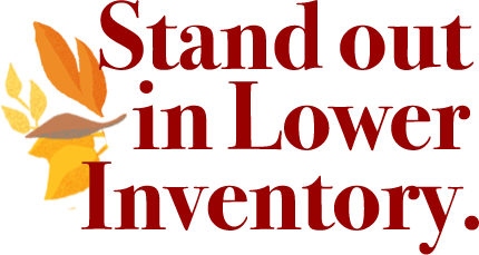 Standoutinlowerinventory..png