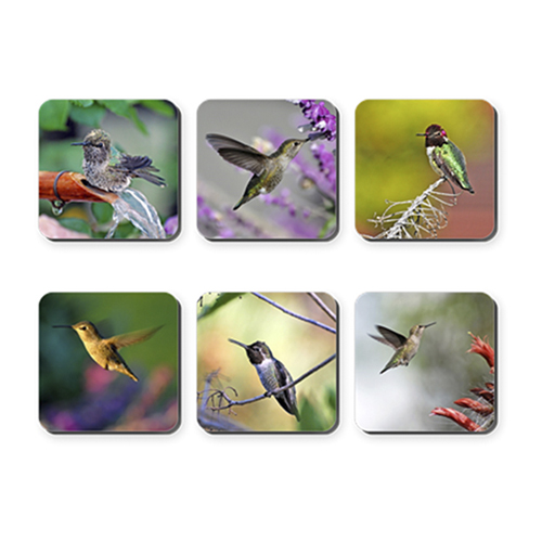Hummingbird Coasters $7.49