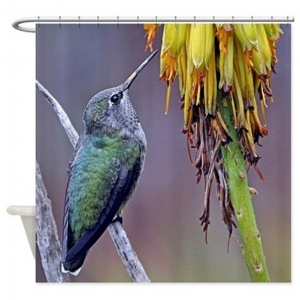 Perched Female Anna's Hummingbird Shower Curtain  $59.99