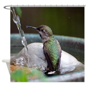 Anna's Hummingbird In The Fountain Shower Curt ain $59.99