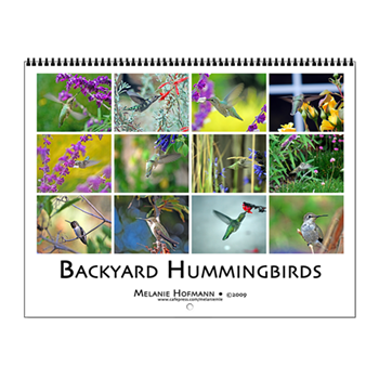 Backyard Hummingbirds Calendar $24.95  Sale $19.   49