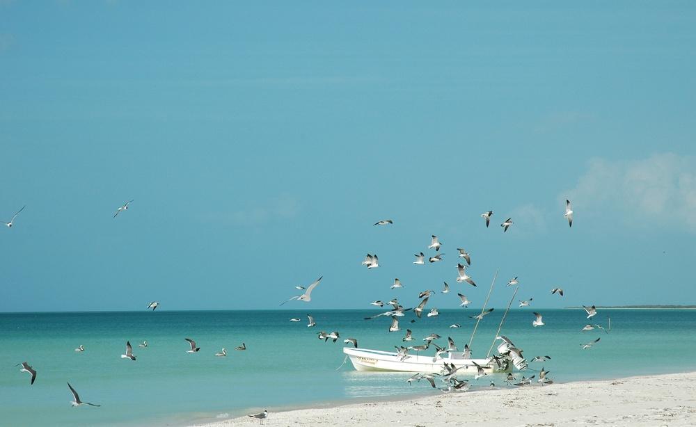 holbox beach.jpg
