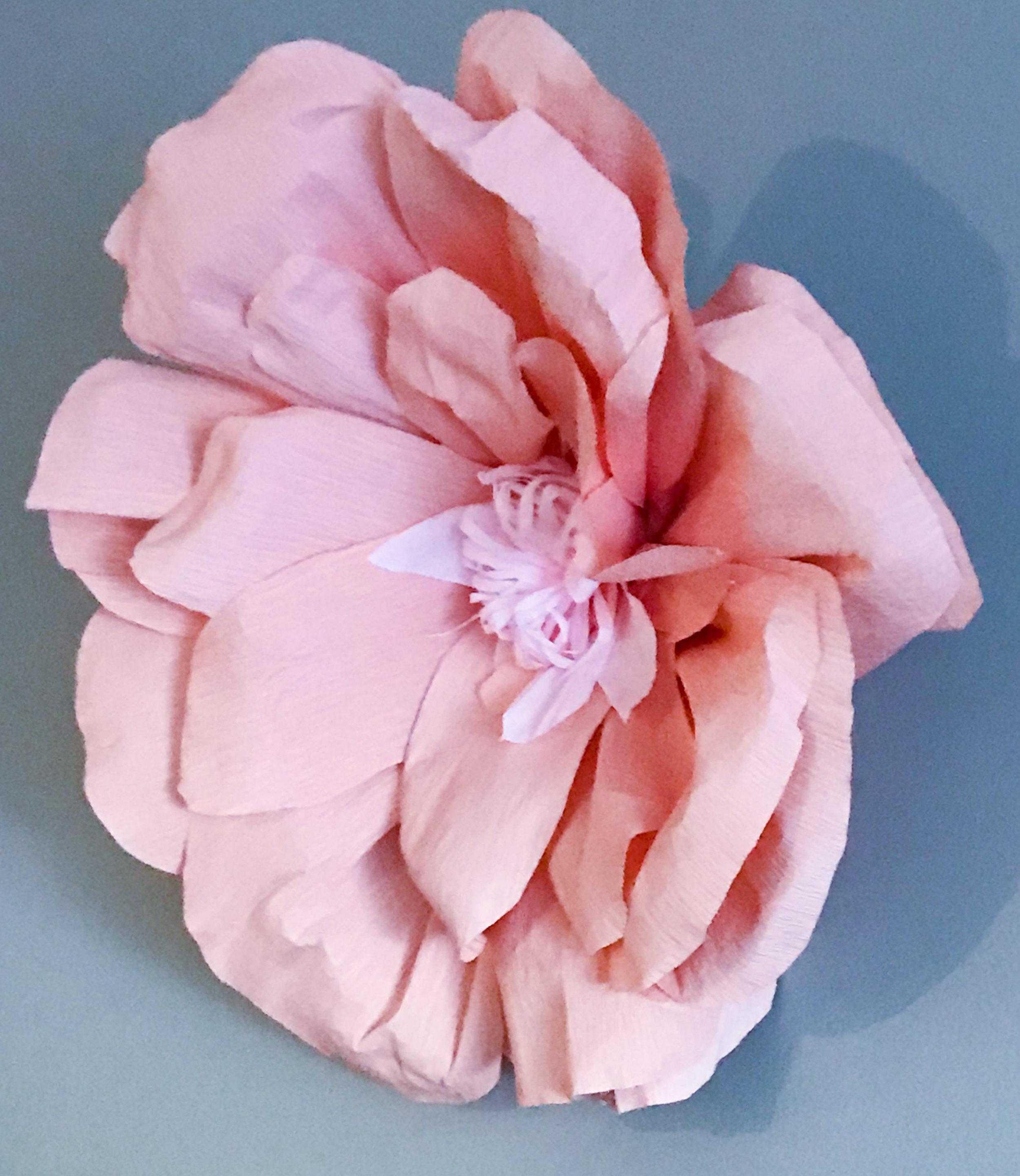 Wall Flower 18