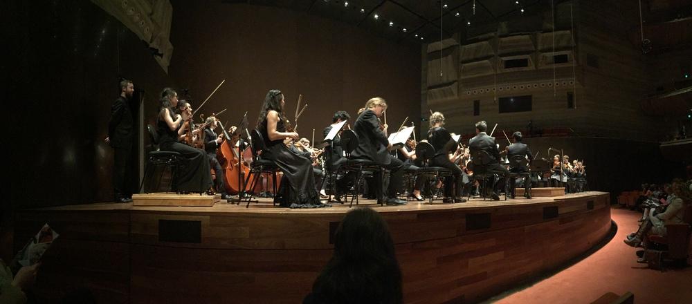 The Australian Youth Orchestra. Image: © Jasen Scott, 2016.