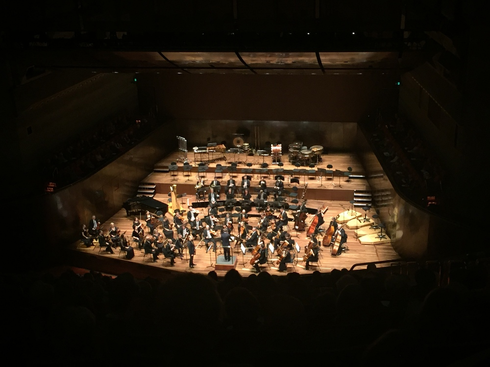 Richard Tognetti with the Melbourne Symphony Orchestra, conducted by Sir Andrew Davis. Image: © Jasen Scott, 2016.